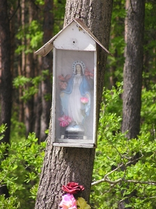 Shrine: A Holy Mother of Jesus.