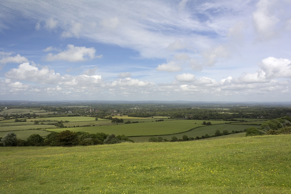 Sussex landscape: Landscape of the South Downs, Sussex, England.