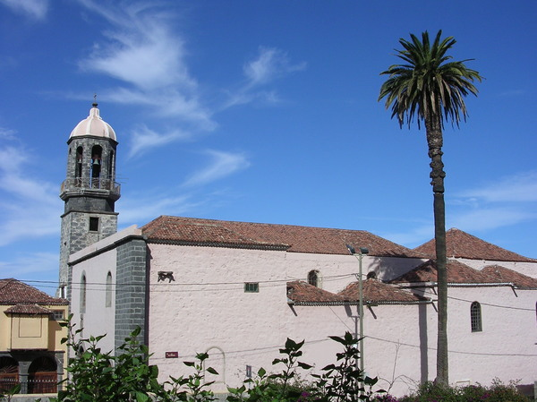 church and palm
