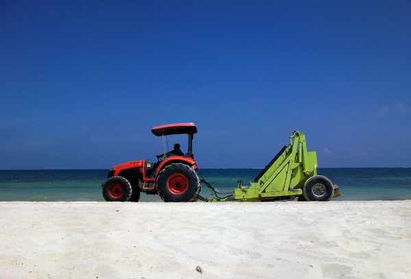Cleaning the seashore: A scene of the Cancun coastline