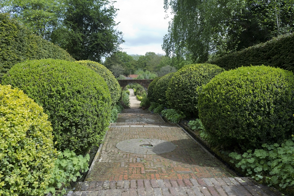 Garden path with topiary