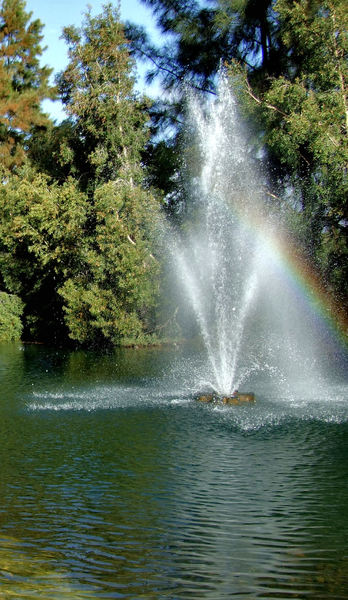 rainbow spray4
