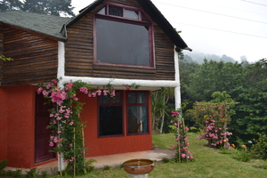 House and roses: A modern house in the higlands of Guatemala, on the road to Cobán.