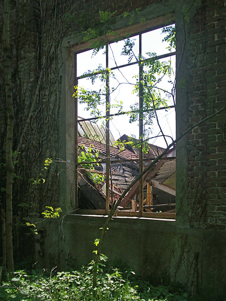 window with a view of ruined b