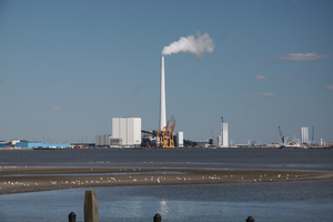 Cole Power Plant: Cole power plant at Esbjerg harbour with a sandbank with seagulls and crays in the front