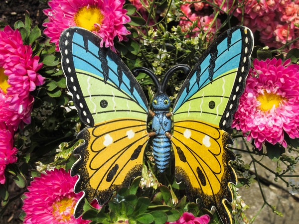 colourful butterfly figurine