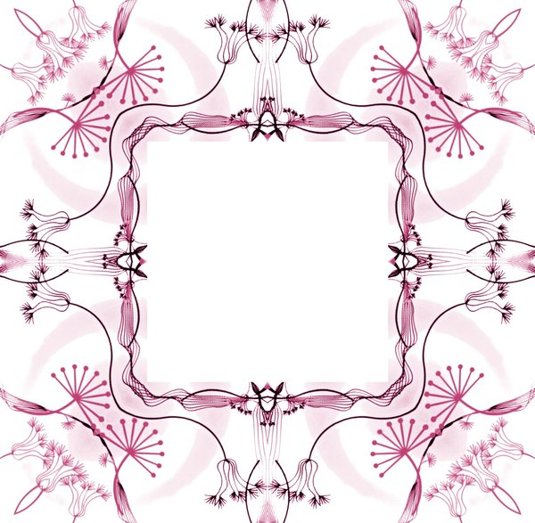 Ornate Floral Frame 7