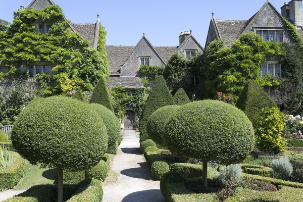 Topiary garden: A topiary garden in the grounds of an old manor house in Wiltshire, England.