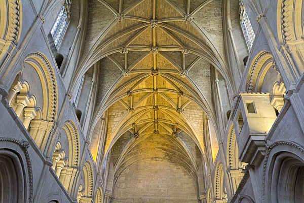 Abbey architecture: Elements of the architecture of Malmesbury abbey, Wiltshire, England. Photography of the inside and outside of this building is freely permitted.