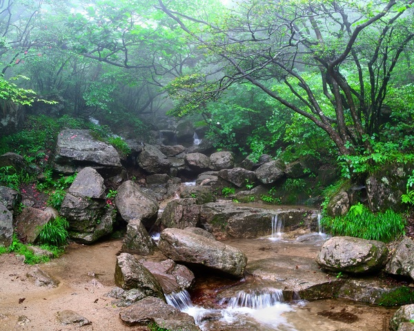 Mountain creek in a mist: The shot was taken in one of the magical corners of Huangshan mountains, China. Let it be your desktop wallpaper and try to look at it for a couple minutes a day. It will bring peace in your heart, I promise :) Any comment are welcome, as usual.