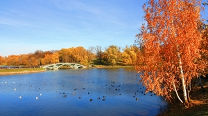 Autumn in Moscow 3: This is an autumn landscape of Tsaritsyno park, Moscow, Russia. Designed to be your desktop wallpaper.