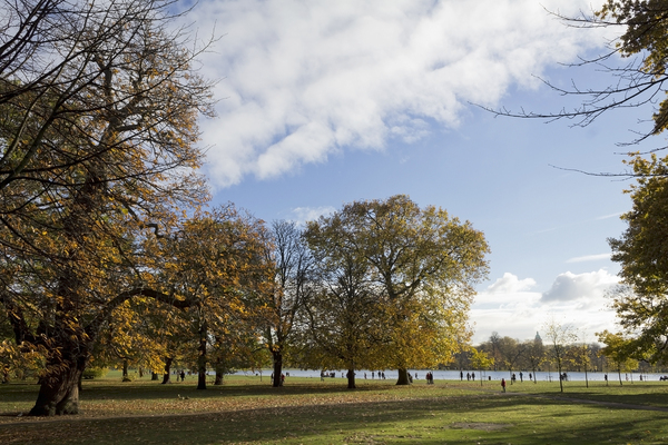 London park in autumn