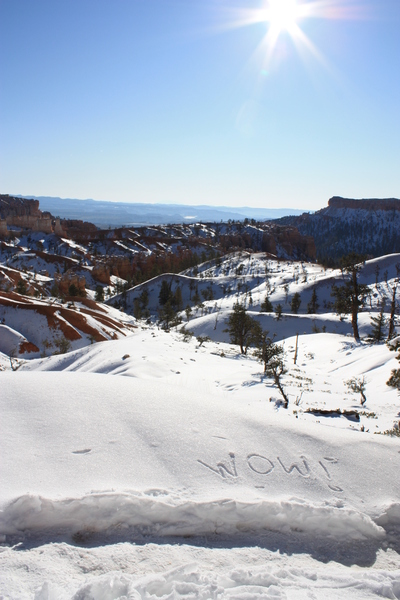 Bryce canyon winter scene