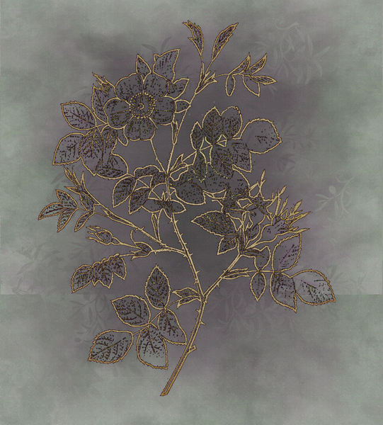 Variations on silk batik 2: Botanical drawing used on manipulated background.
