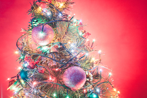 Christmas Tree 16: Photo of christmas tree