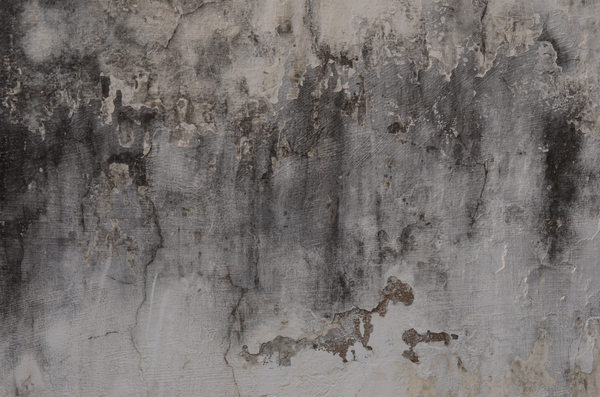 Decaying wall 4