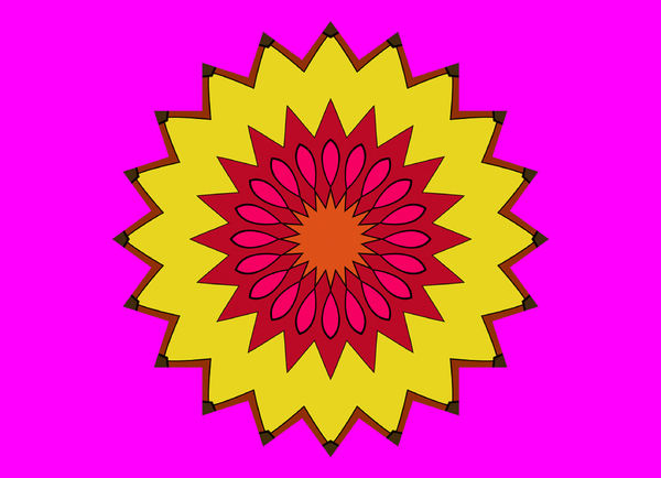 sunflower in the pink