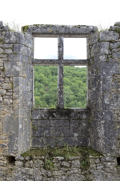 Castle window remains