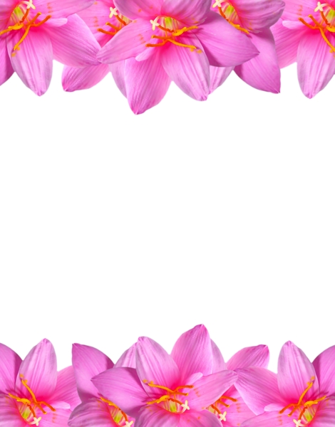Natural Floral Border 2: A floral border of beautiful natural pink flowers. You may prefer:  http://www.rgbstock.com/photo/mVEl3Cw/Pretty+in+Pink+1  or:  http://www.rgbstock.com/photo/2dyVTby/Hibiscus+Border+1