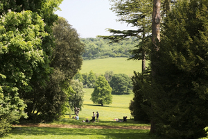 Picnic view: Landscape of Buckinghamshire, England, being enjoyed by picnickers.