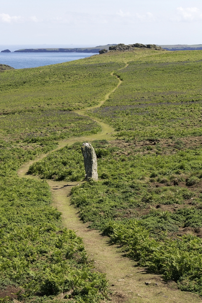 Footpath and menhir