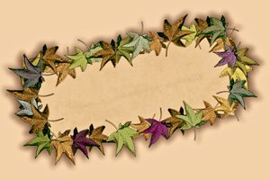 Leafy Banner 1: A fall or autumn banner of multi-coloured leaves on a plain background. You may prefer:  http://www.rgbstock.com/photo/2dyWUEB/Grungy+Leaf+Border  or:  http://www.rgbstock.com/photo/o4RYoqE/Decorated+Parchment+8