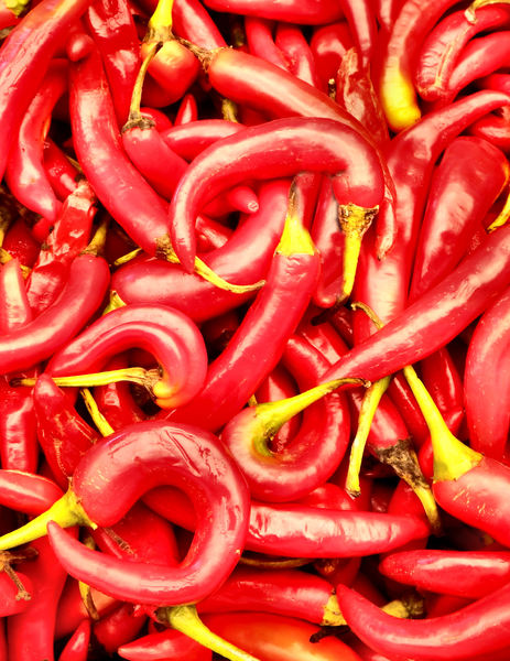 lots of chillies1b: bulk quantity of raw fresh chillies