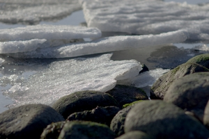 Winter coast: Winter coastline with stones and melting ice.