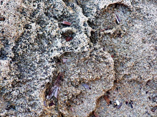 seaside rock textures3