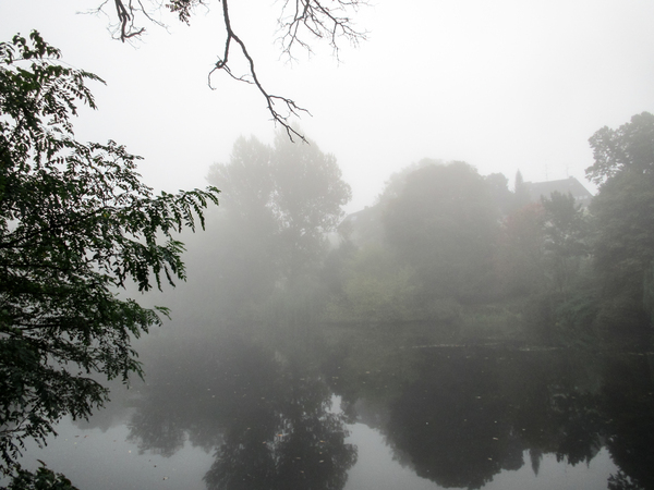 lake in autumn fog