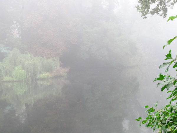 lake in autumn fog 3