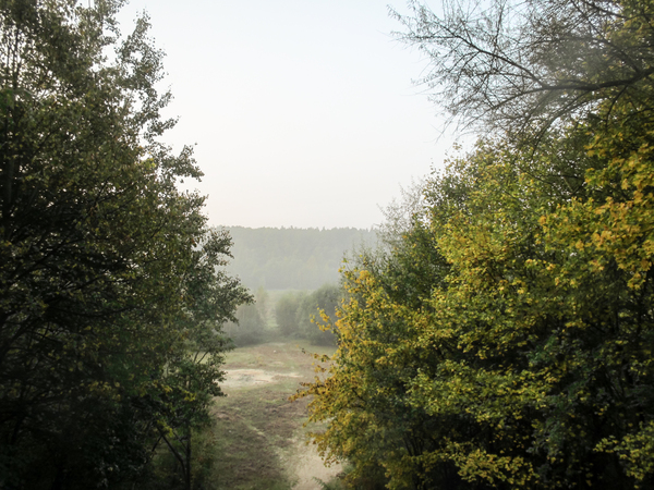 foggy autumn landscape 4