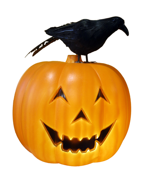 Halloween pumpkin and crow