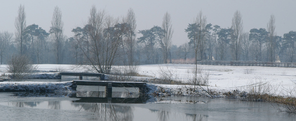 Winter landscape 1