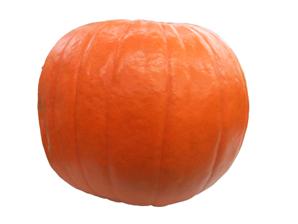 big orange pumpkin