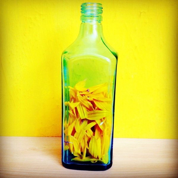 Petals in a bottle