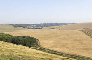 Downland landscape: Landscape of the South Downs, East Sussex, England.