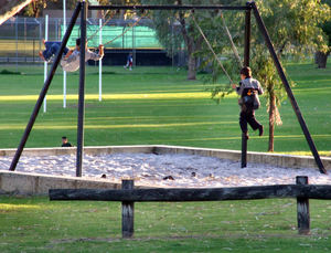 in the swing of things1: boys playing on suburban playground swings