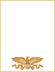 Eagle Border: An American eagle symbol in gold with a gold border. Can represent patriotism, fourth of July, official business. You may prefer:  http://www.rgbstock.com/photo/o6zCwow/Fourth+of+July+1  or:  http://www.rgbstock.com/photo/nvi0UW8/Golden+Ornate+Border+2