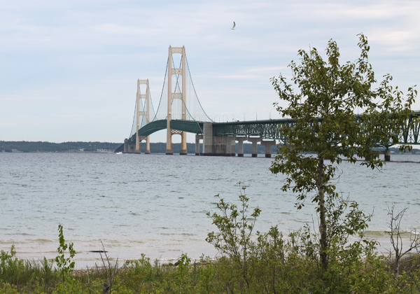 Mackinac bridge: Mackinac bridge from Colonial Michilimackinac fort, Mackinaw city,Michigan,usa