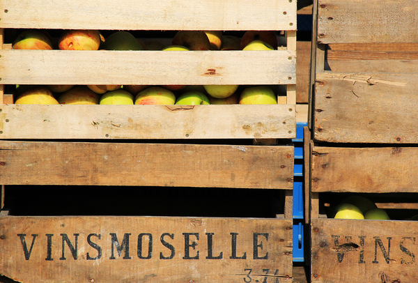 Crate of apples: Crate of apples