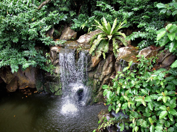 small tropical waterfall1