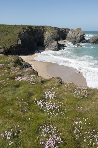 Sheltered beach: A sheltered sandy beach on the north coast of Cornwall, England.