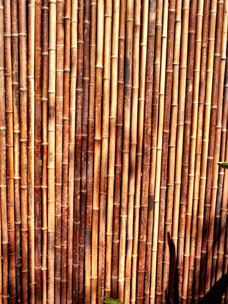 bamboo screen fence2