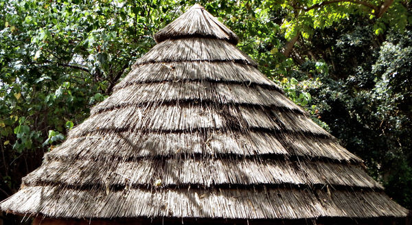 thatched roof2: thatched hut roof - layers of thatching