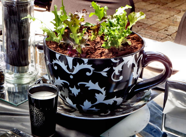 outdoor table decore2: giant cup plant pot - table decoration