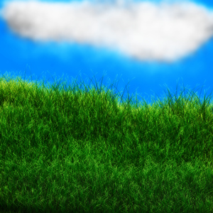 cloud and grass background: Clouds and grass