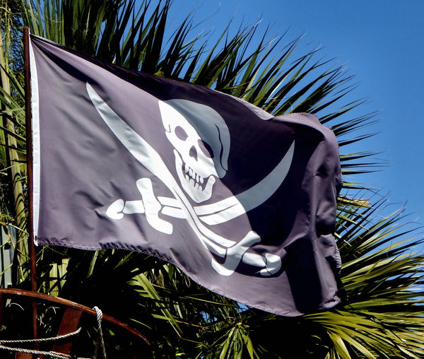 jolly roger: jolly roger traditional pirate flag