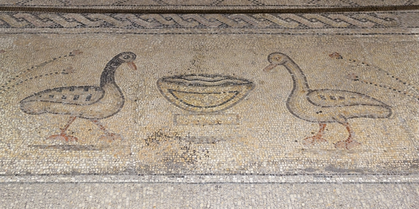 Ancient mosaics: Fifth-century mosaics at The Church of the Multiplication of the Loaves and Fish, Tabgha, Galilee, Israel. Photography at this site was freely permitted. Taken 23 October 2014, eight months before the appalling arson attack on the site.