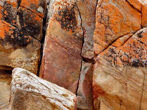 rocky surfaces17: rough and mixed rock surface elements